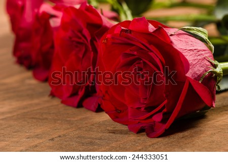 Close up red rose on a wooden table - stock photo