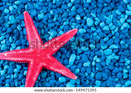 Close up red starfish on blue background - stock photo