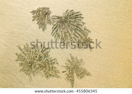 close up sand texture background