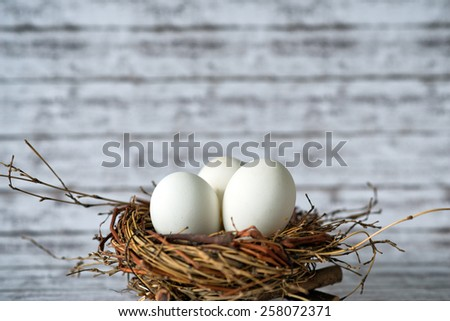 Close up Shot of a Conceptual Three Whole White Chicken Eggs in a Nest with Fuzzy Background. - stock photo