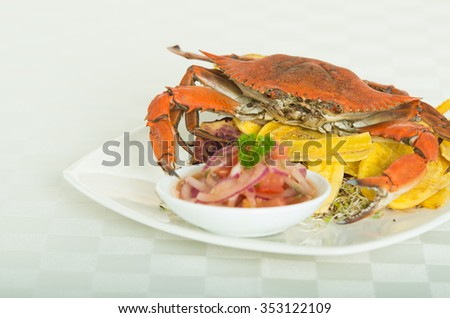 Close up shot of a delicious elegant red crab on a plate with onion and tomato sauce