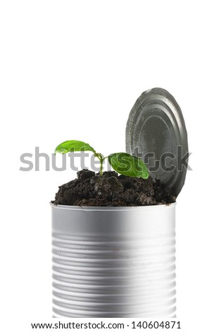 Close-up shot of a small plant in tin can against white background. - stock photo