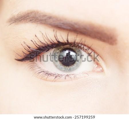 close up shot of beautiful woman eye - stock photo