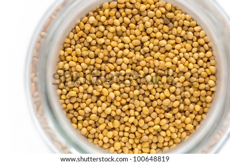 close up shot of brown mustard seed - stock photo
