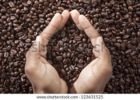 Close-up shot of cupped human hand holding coffee beans. - stock photo