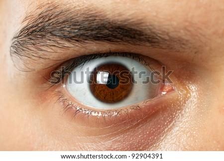 close-up shot of man brown eye - stock photo