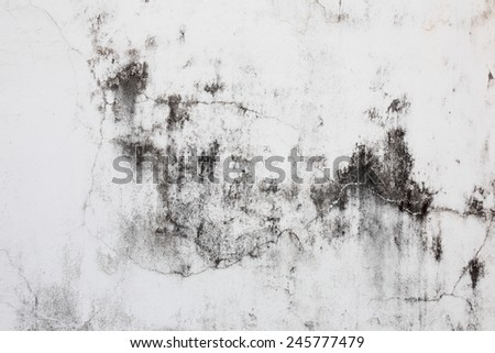 Close-up shot of old cement wall  - stock photo