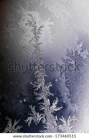 Close-up shot of some icy-flowers on a window