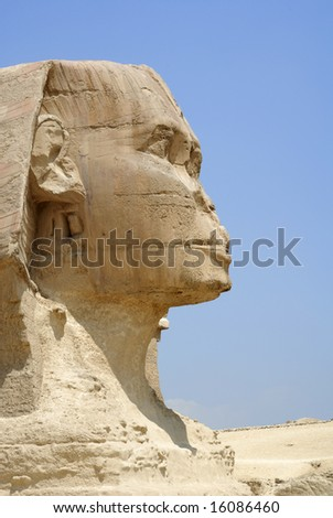 close-up shot of Sphinx