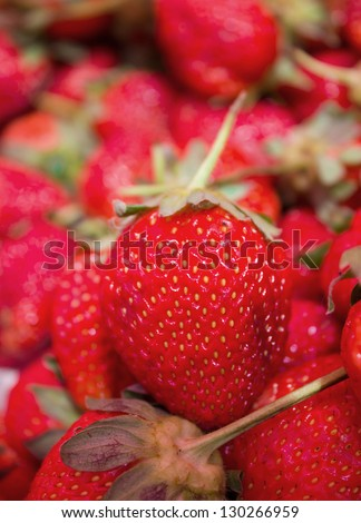 close up shot of strawberries in Thailand