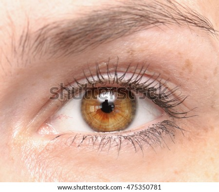 close up shot of woman eye