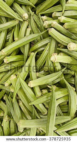 Close up shot on okra.Image has grain or noise and soft focus when view at full resolution(Shallow DOF, slight motion blur) - stock photo