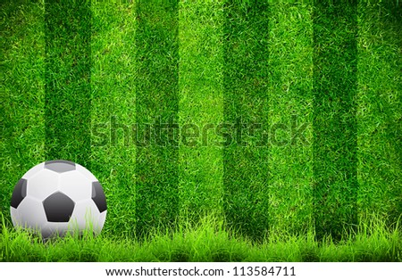 Close up soccer ball on green grass background - stock photo