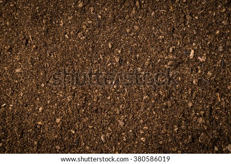 close up soil peat moss dirty background and texture - stock photo
