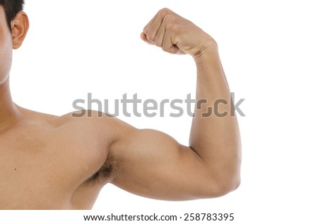 Close up strong biceps on a white background