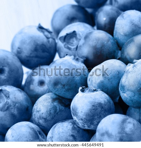 Close up studio shot of bunch of organic blueberries in food container - stock photo