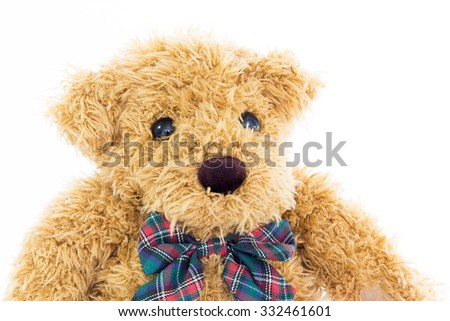 Close up teddy bear portrait on white  background - stock photo