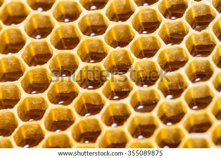close-up texture of a honeycomb with honey - stock photo