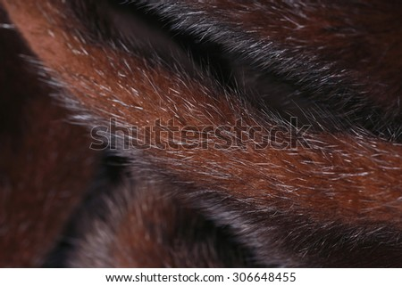 close-up texture of natural dark mink fur