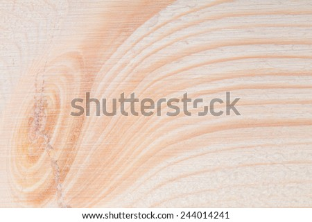 Close up texture of wood background. Macro shot - stock photo