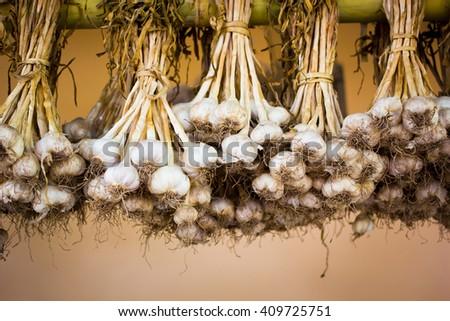 Close up thai garlic bulbs and garlic cloves hang on bamboo pole background - stock photo