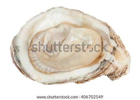 Close-up the raw fresh oyster texture, tasty concept. - stock photo