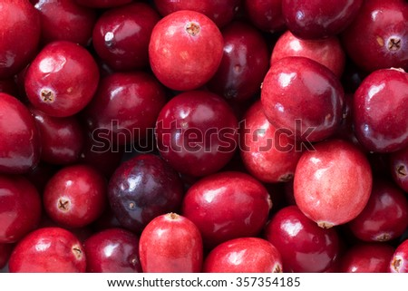 Close up, top view of fresh cranberries - stock photo
