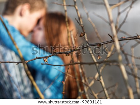 close up tree branches with being dismissed leaves against the kissing couple - stock photo