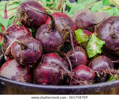 Close-up view group of fresh, organic Red beets in a supermarket at Colfax, Whitman County, Washington, USA. - stock photo