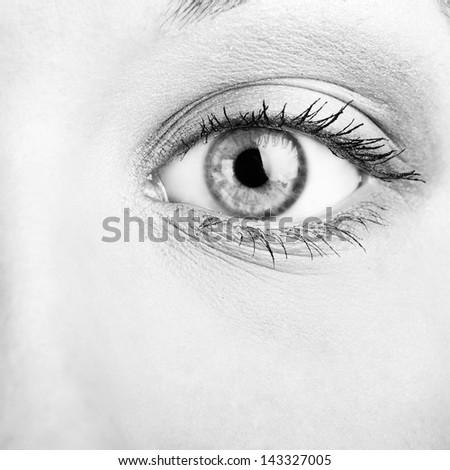 close-up view of a beautiful female eye - stock photo