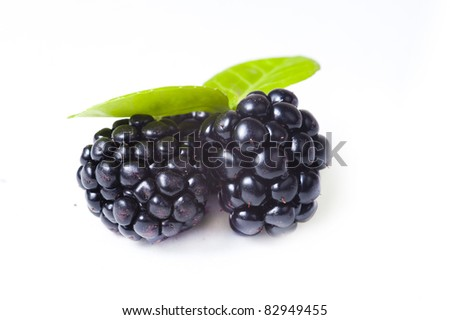 Close up view of blackberries on a white background