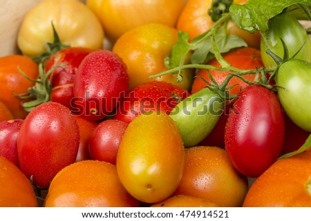 Close-up view of different fresh green and red tomatoes with waterdrops
