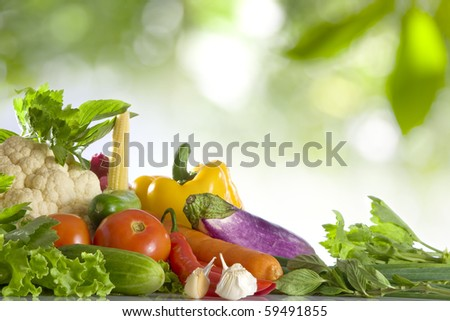 Close up view of nice fresh vegetables  on color  back - stock photo