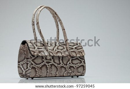 close up view of  nice small  snake skin  ladie's  bag on grey back - stock photo
