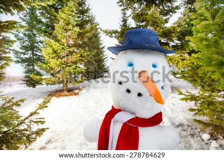 Close-up view of snowman with blue hat and scarf - stock photo