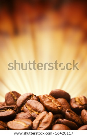 Close up view of the coffee bean - stock photo