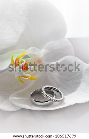 close up view of two wedding rings on white back - stock photo