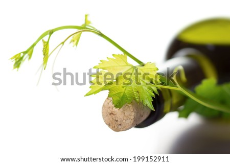 Close up view of  wine bottle and grape vine isolated on white background - stock photo