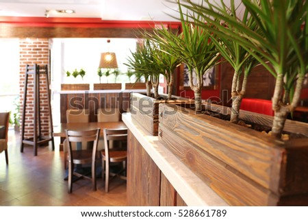 Close up view of wooden boxes with plants in cafe