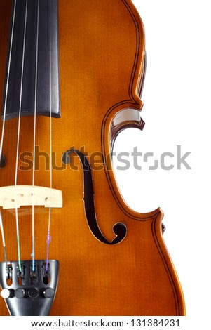 Close-up violin on white background
