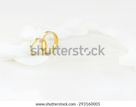 Close-up wedding rings and white petals/Wedding rings/Wedding rings - stock photo