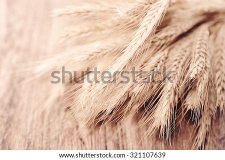 close up wheat on wooden desk