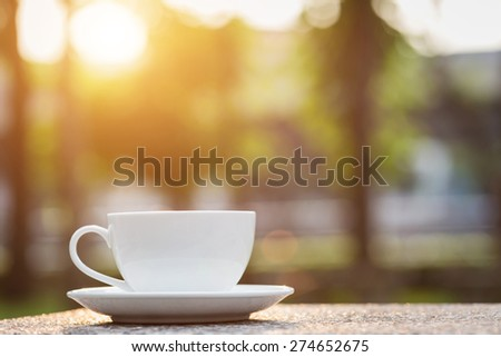 Close up White coffee cup in the park