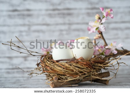 Close up Whole and Open White Chicken Eggs in a Nest with Little Fresh Flowers on Top of a Table with Fuzzy Background. - stock photo