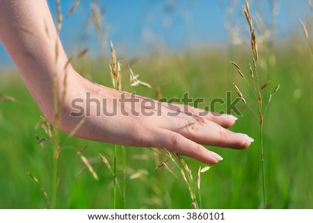 close-up woman hand in green grass