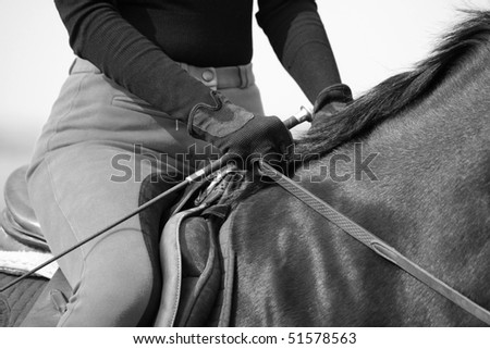 Close up woman sit on horse, dressage ( black white) - stock photo