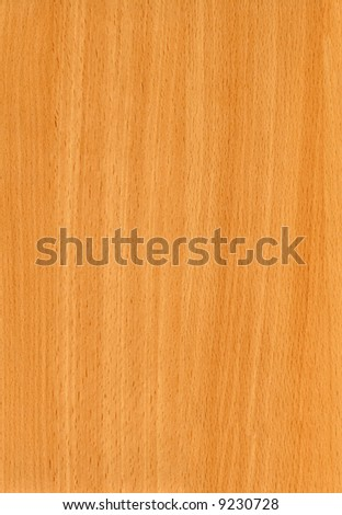 Close-up wooden HQ (Beech Bavaria) texture to background - stock photo