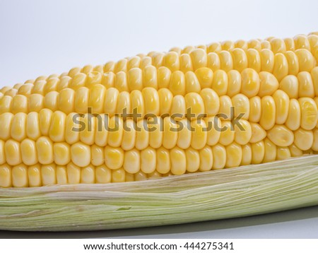 Close up yellow corn on isolated / white background (agriculture product)