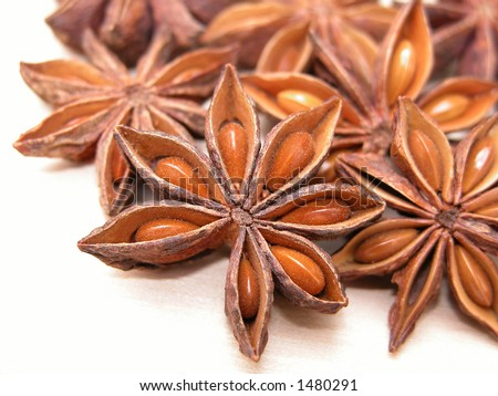 close-ups of anise stars isolated