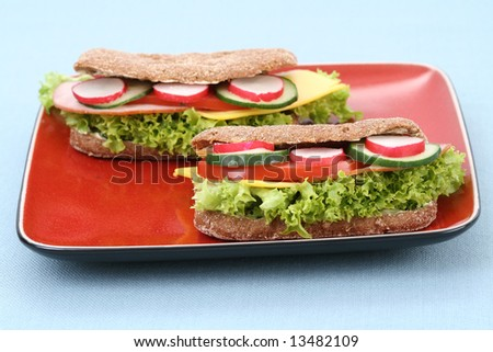 close-ups of two delicious sandwiches